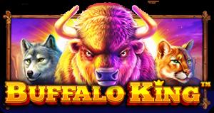 buffalo-king12